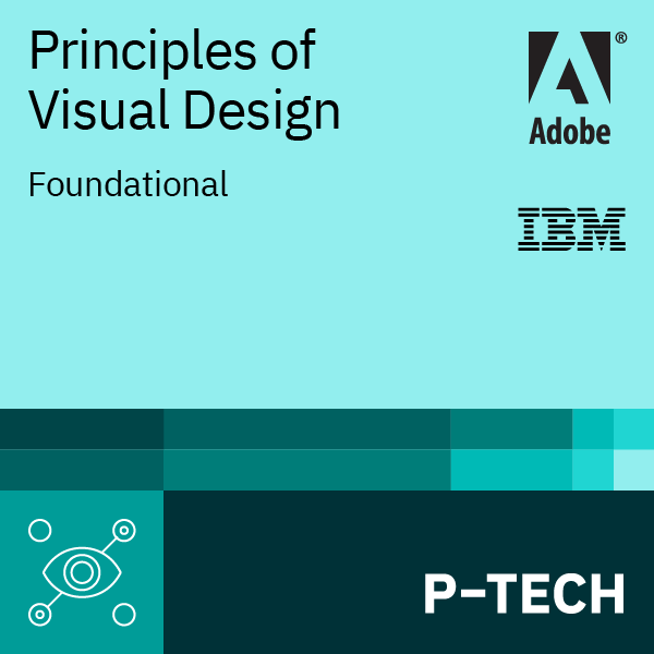 Image for Principles of Visual Design